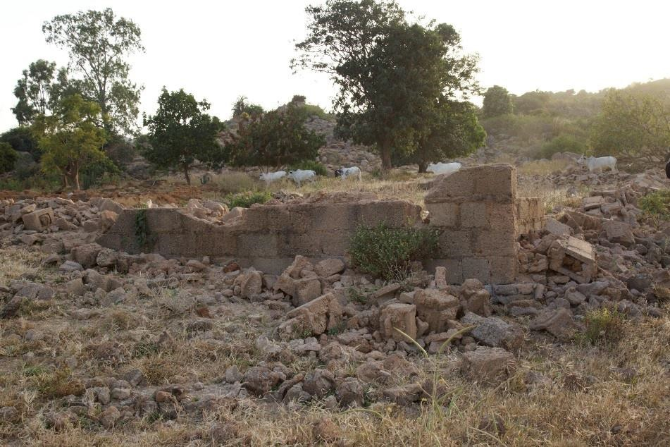 The ruins of a church, now surrounded by Fulani herdsmen and their cattle